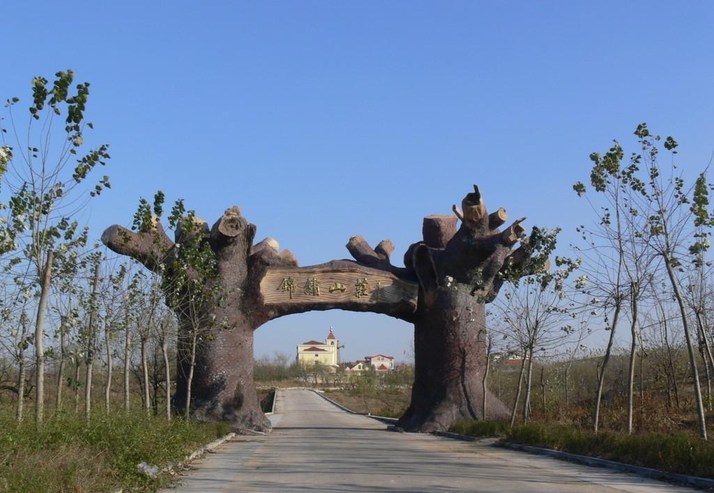 天津假树_假树_塑料假树